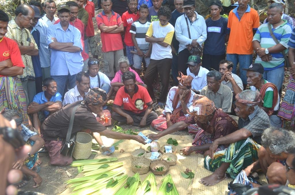 Masyarakat Fatuketi menggelar ritual adat untuk pembangunan Bendungan Rotiklot, Belu.