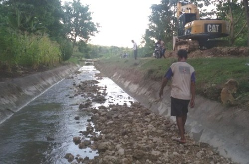 Inilah saluran primer irigasi DAS Benenain, yang penuh dengan sedimentasi material.