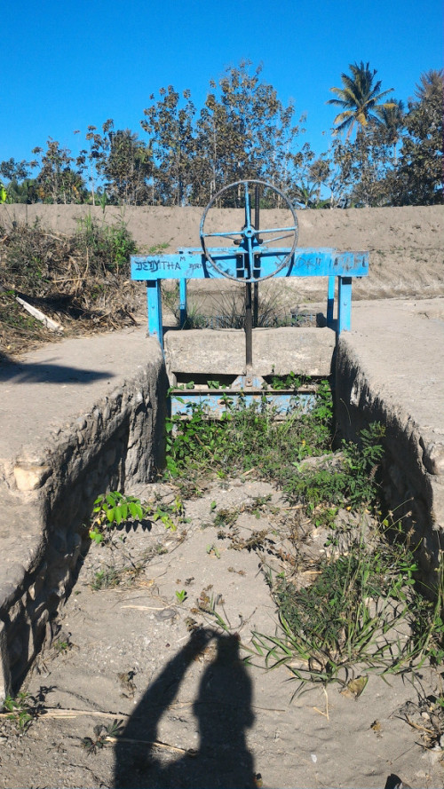 Inilah kondisi irigasi di Obor, Belu yang mubazir.