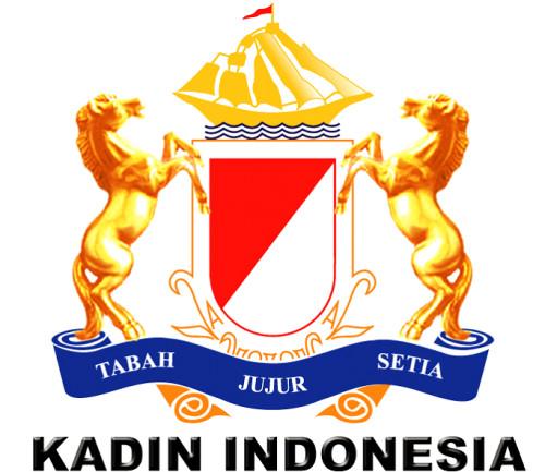 Logo Kadin
