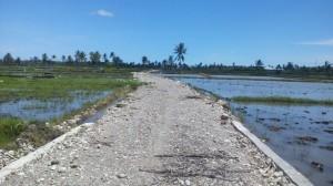 Inilah kondisi jalan tani di Desa Wahali.