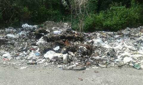 Inilah sampah yang dibuang di Hutan Kateri, Malaka.
